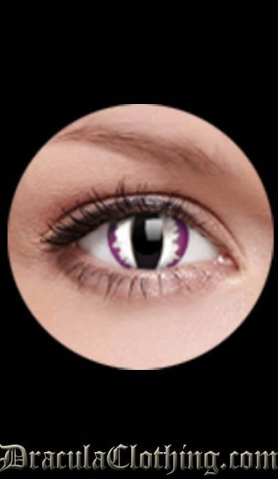 Purple Dragon 1 Year Contact Lenses