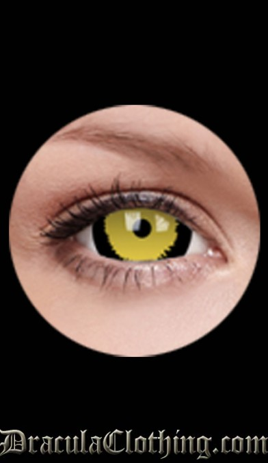 Tigera 1 Year Contact Lenses 17 mm